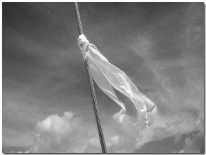 Everyone needs a white flag!