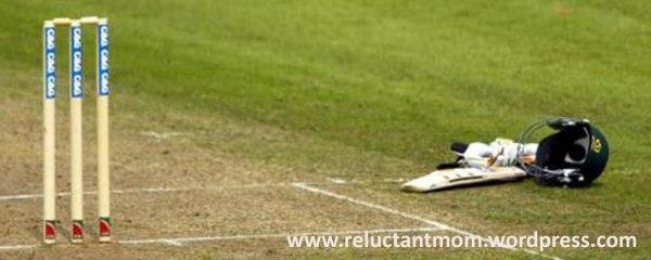 130214_cricket-banner