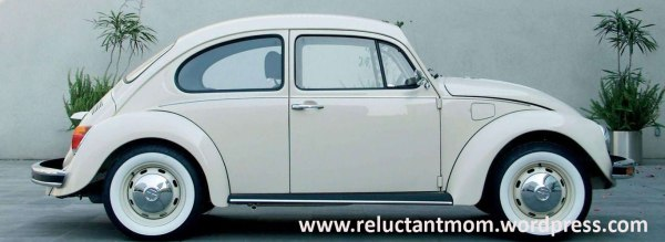 130320_VW-Image