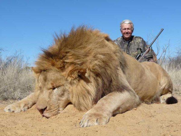 lion_004_big