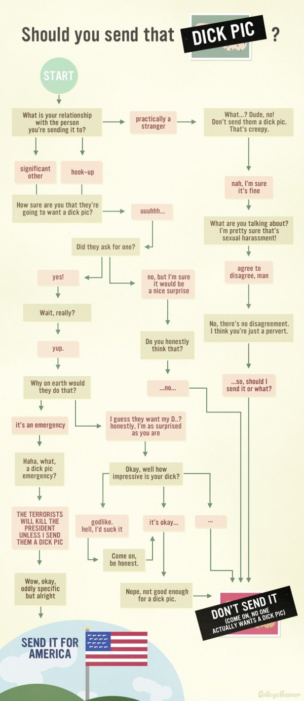 dick pic-flow chart