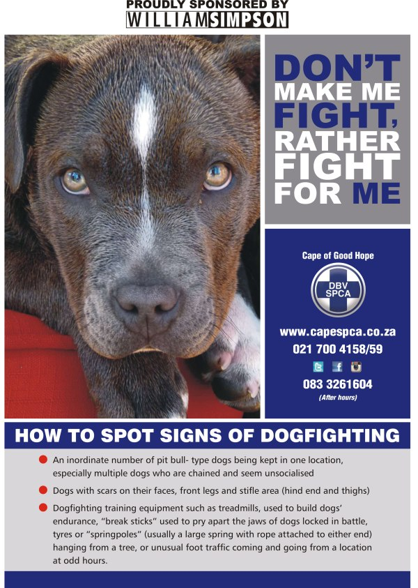 DogFighting Poster